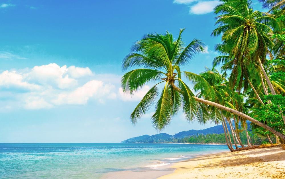 Urlaubskredit Beantragen – Was Ist Zu Beachten?